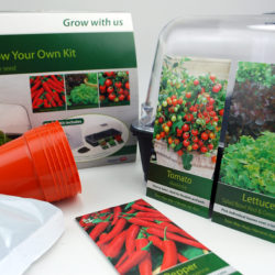 Stewart Premium 38 cm propagator kit and contents