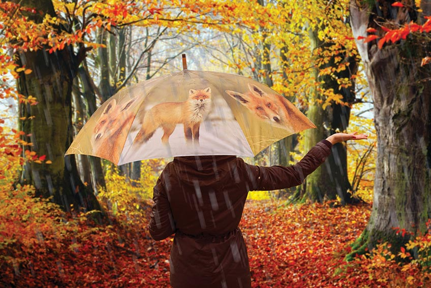 Fallen Fruits fox umbrella