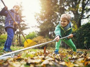 How getting kids gardening is the next big thing for garden retailers