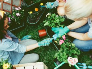 How to make the most of National Children's Gardening Week
