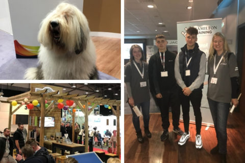 Brookes & Co at the National Painting and Decorating Show 2018